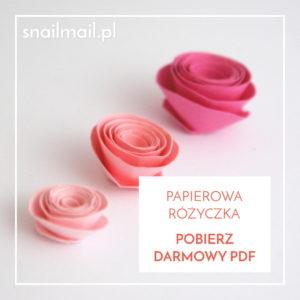 pobierz-darmowy-pdf-papierowa-rozyczka